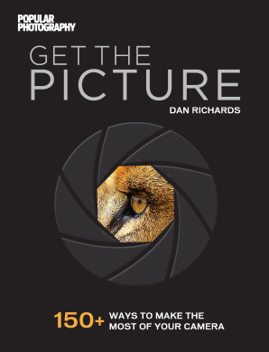 GET THE PICTURE Paperback  by RICHARDS, DAN