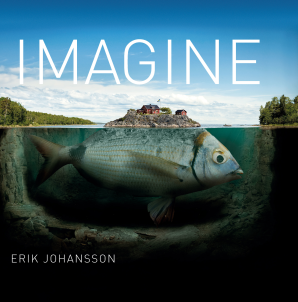 IMAGINE Hardcover  by JOHANSSON, ERIK