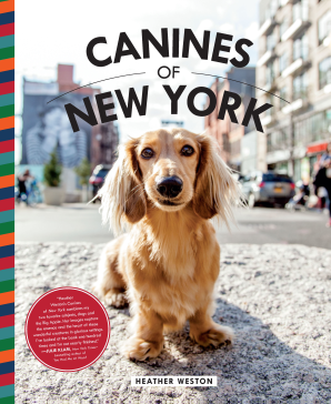 CANINES OF NEW YORK Hardcover  by WESTON, HEATHER